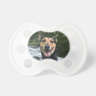 Smiling Dog on Rock Pacifier