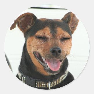 Smiling Dog sticker