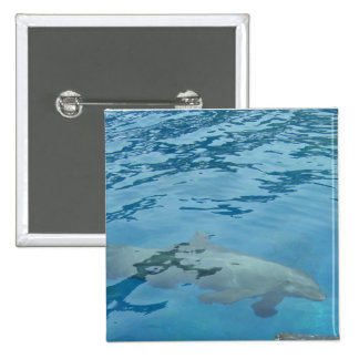Smiling Dolphin 2 Inch Square Button