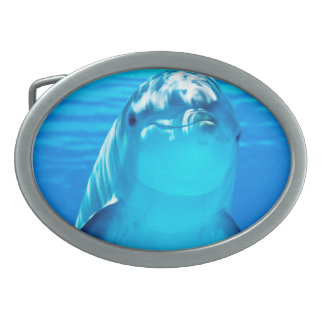 Smiling Dolphin Underwater Sea Life Belt Buckles