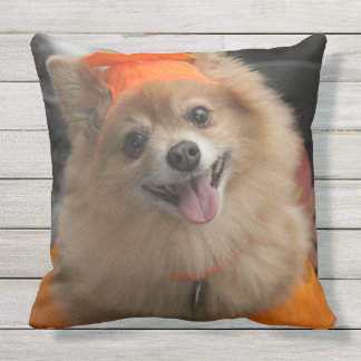 Smiling Foxy Pomeranian Puppy in Pumpkin Halloween Outdoor Pillow
