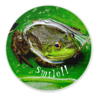 Smiling Frog Drawer Pull
