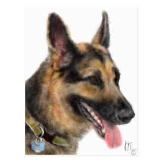 Smiling German Shepherd Postcard