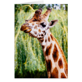 Smiling Giraffe, Animal Showing Its Teeth Card