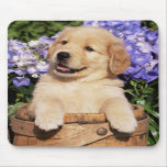 Smiling Golden Retriever Puppy Dog Mouse Pad