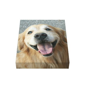 Smiling Golden Retriever Wrapped Canvas Print