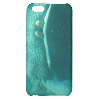Smiling Hippo iPhone 4 Case