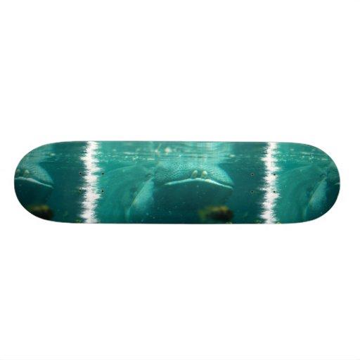 Smiling Hippo  Skateboard