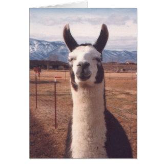 """Smiling Llama"" Card"