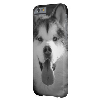 Smiling malamute phone cover