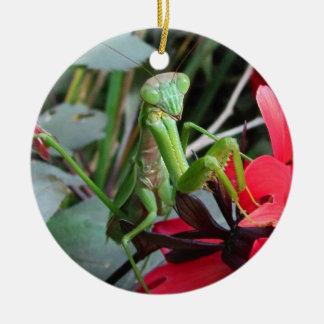 Smiling Mantis ~ ornament