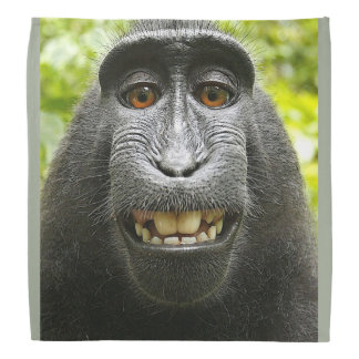 Smiling Monkey Bandana