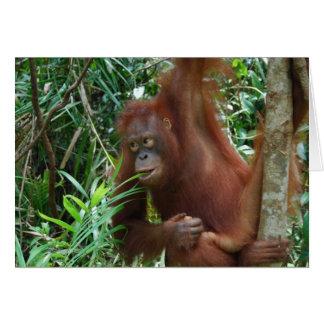 Smiling Orangutan Card
