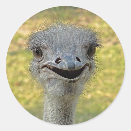 Smiling Ostrich Sticker