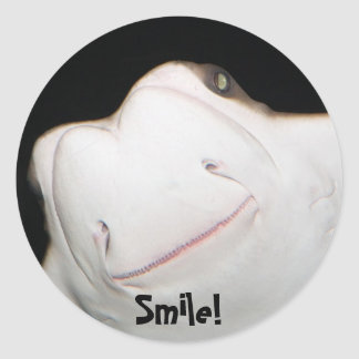 Smiling Ray Sticker