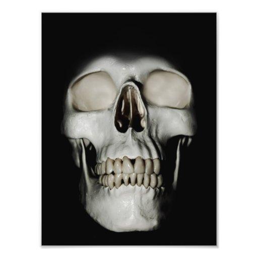Smiling Skull emerging Art Photo