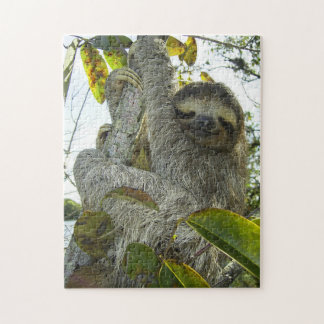 Smiling Sloth Puzzle with Gift Box