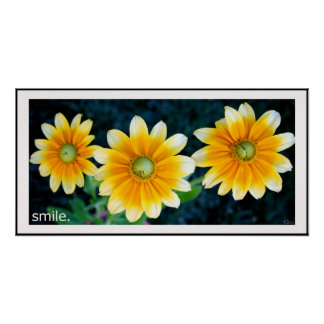 Smiling Sunflowers Poster