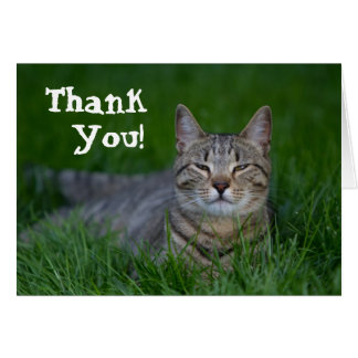 Smiling Tabby Cat Thank You Card