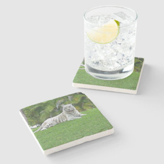 Smiling White Tiger and Palm Trees Stone Coaster