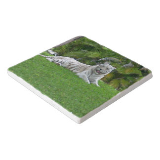 Smiling White Tiger and Palm Trees Trivet