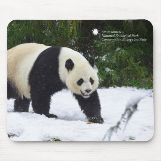 Smithsonian | Giant Pandas In The Snow Mouse Pad
