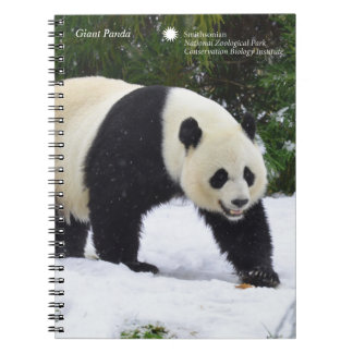 Smithsonian | Giant Pandas In The Snow Spiral Note Books