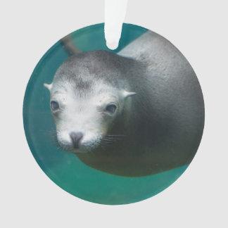 Smithsonian | Sea Lion Ornament