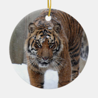 Smithsonian | Sumatran Tiger Damai Ceramic Ornament