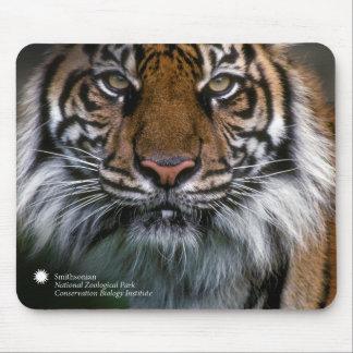 Smithsonian | Sumatran Tiger Soyono Mouse Pad
