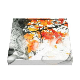 Smokey FALLs Canvas Print