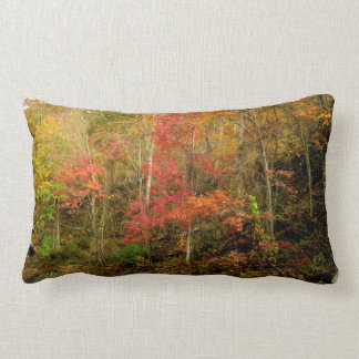 Smoky Mountains Fall Lumbar Pillow
