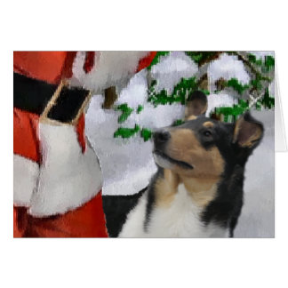 Smooth Collie Christmas Gifts Card