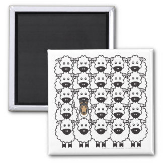 Smooth Collie in the Sheep Square Magnet