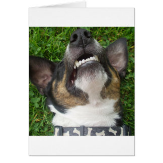 smooth fox terrier chillin card