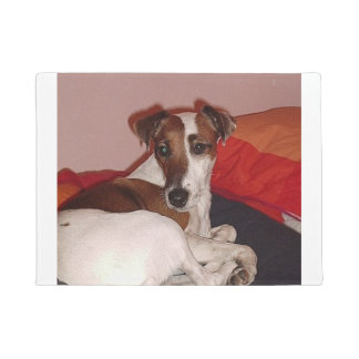 smooth fox terrier laying doormat