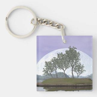 Smooth leaved elm bonsai tree - 3D render Keychain