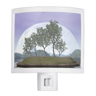 Smooth leaved elm bonsai tree - 3D render Night Light