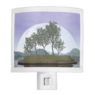 Smooth leaved elm bonsai tree - 3D render Nite Light