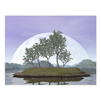 Smooth leaved elm bonsai tree - 3D render Postcard