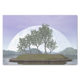 Smooth leaved elm bonsai tree - 3D render Tissue Paper