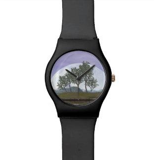 Smooth leaved elm bonsai tree - 3D render Watch