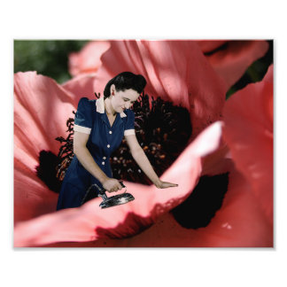 Smooth Poppy Flower Fine Art Print Photo Print