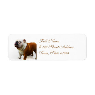 Smug Bulldog Return Address Mailing Labels