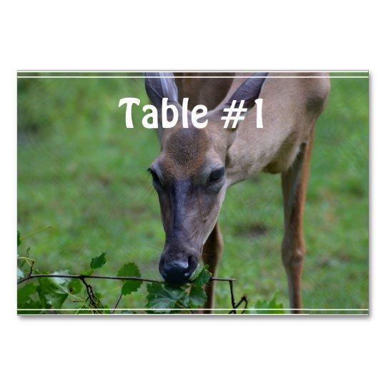 Snacking Deer Card