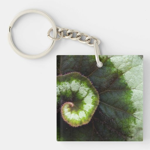 Snail Begonia Leaf Square Acrylic Key Chains