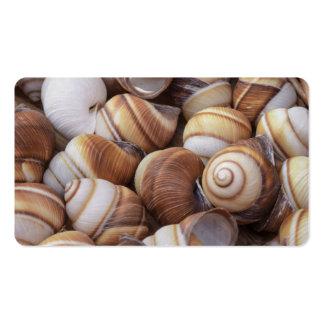 Snail Business Card Templates