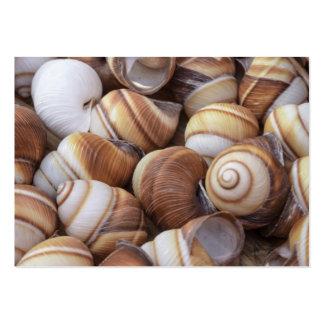 Snail Business Card Template