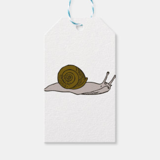 Snail Gift Tags