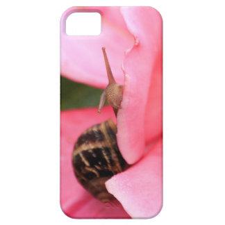 Snail iPhone 5 Case